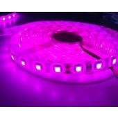 Pink LED Strip Light SMD 5050 5M 300 LEDs 12V 24V Waterproof