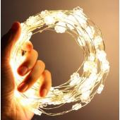 Sun Flower Warm White 33ft 10M 100 LED Copper Fariy String Light 12V